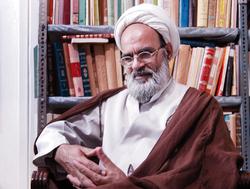 شیخ مقابل گروههای فشار مشروطه تبیین و تحلیل منطقی میکرد
