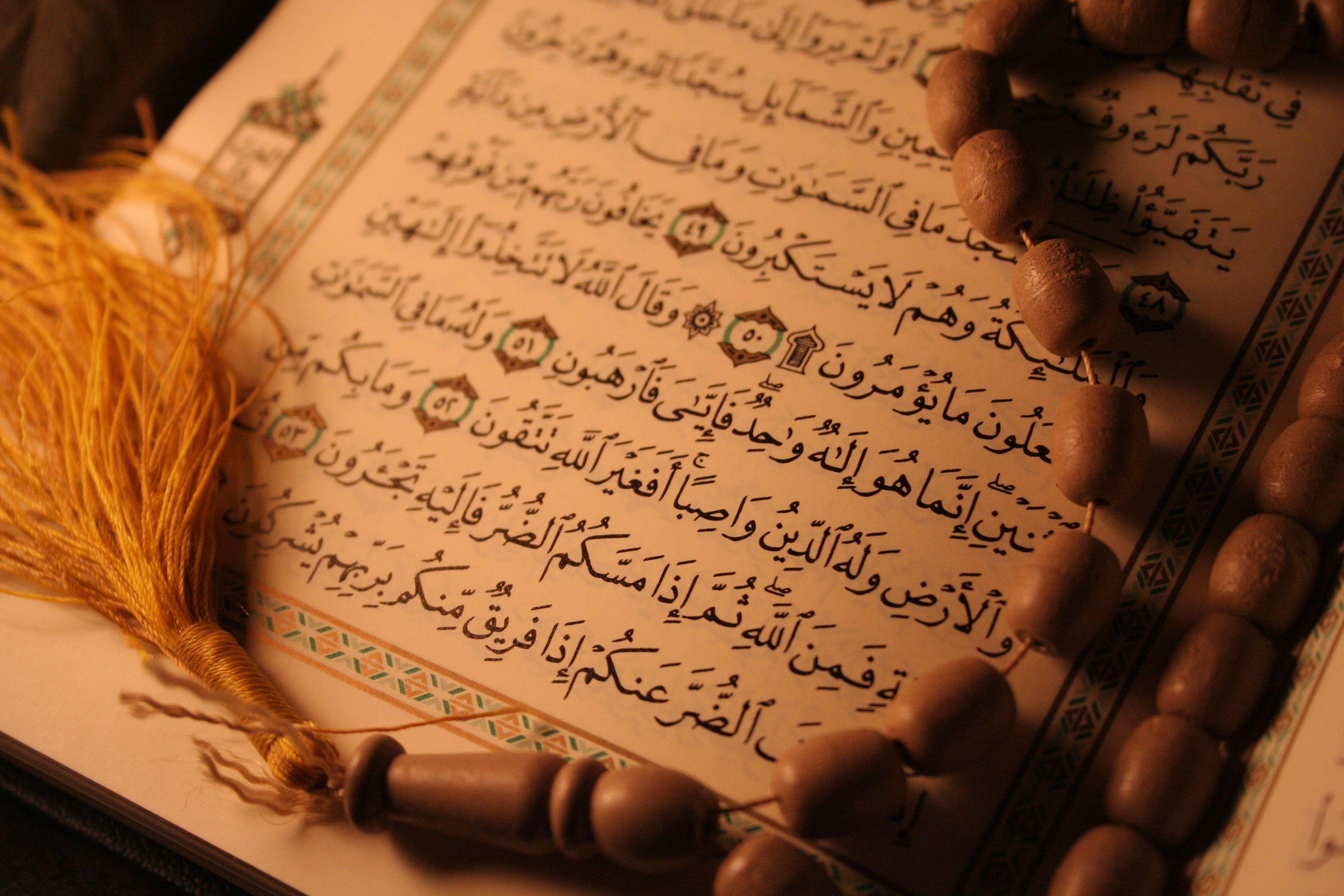 تبعات غفلت از قرآن و اکتفا به دروس حوزوی